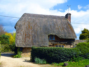 12th May 2016 - Lonely Thatch