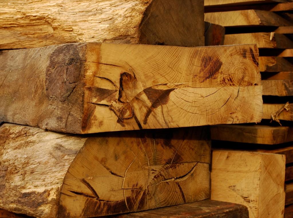 Woodcraft by mandapanda1971