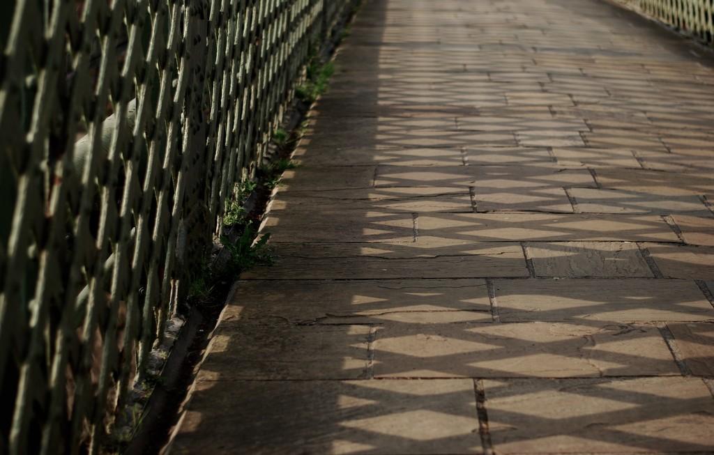Criss-crossing along the bridge by mandapanda1971