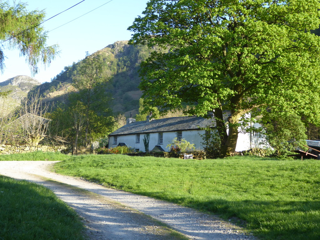 Croft Farm by cmp