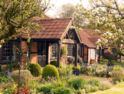 18th May 2016 - Country Garden