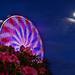 Rhody Days Ferris Wheel