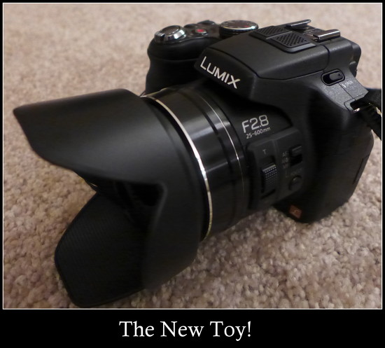 My New Toy! by judithdeacon