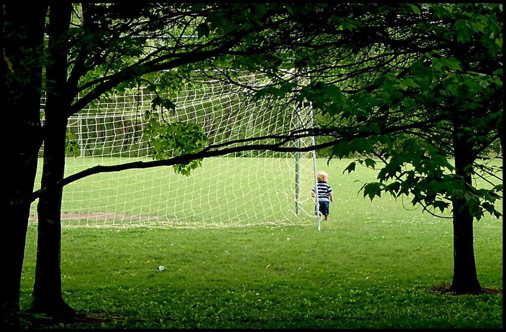 Soccer Dreams by olivetreeann
