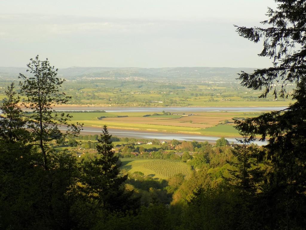 Blaize Bailey Viewpoint, Forest of Dean by flowerfairyann