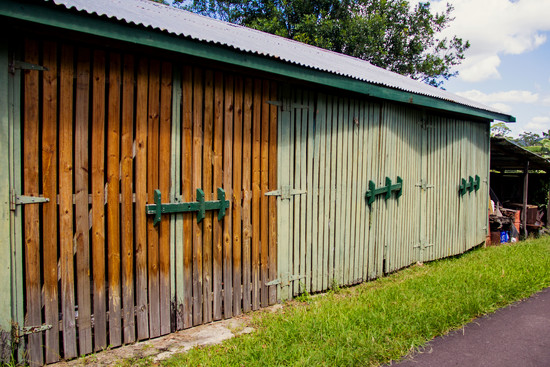 shed by corymbia
