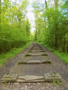 24th May 2016 - Sculpture Trail