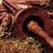 Pile of Rust
