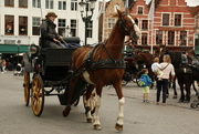 24th May 2012 - Brugge - sight-seeing in style!