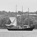 Sail away............