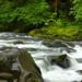 Salmon River by teiko