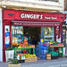 THE GINGER'S STORE