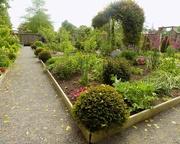27th May 2016 - Westbury Court Gardens