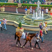 Day at the races by danette