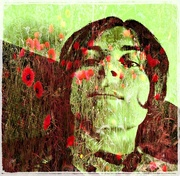30th May 2016 - The poppies and me...