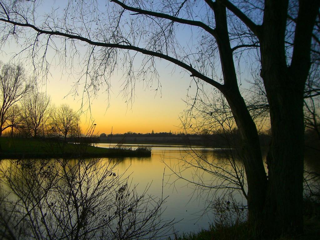 Twilight  by wendyfrost