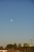 24th Sep 2010 - Morning Moon