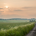 West Blagdon Private Road by humphreyhippo