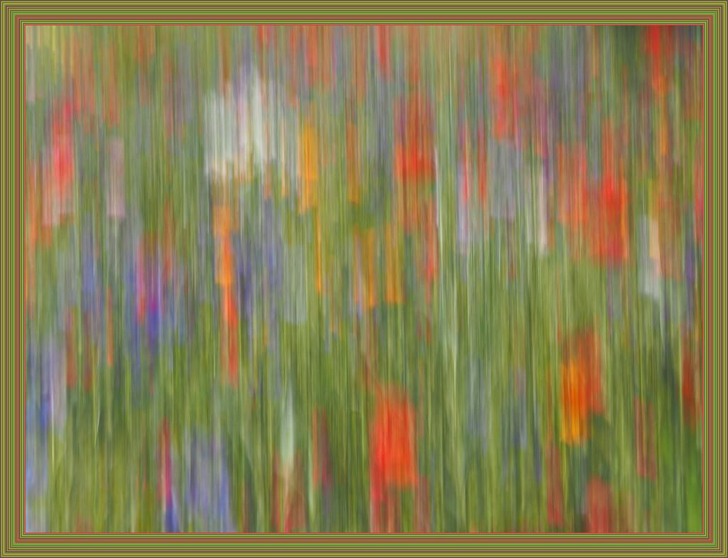 Border colour by laroque