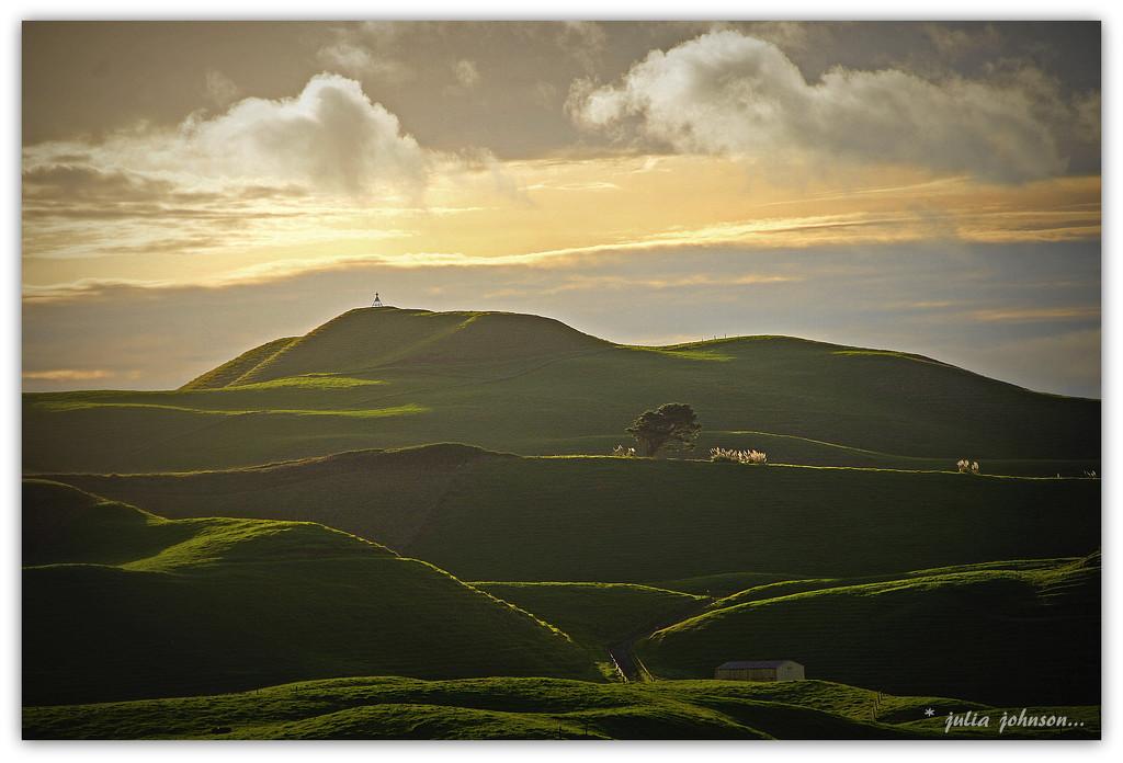 Sunkist hills.. by julzmaioro