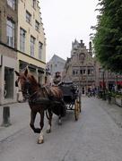 8th Jun 2016 - Horse-drawn carriages