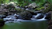 8th Jun 2016 - La Roca river after some rain