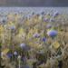 poppy 6: harvest by jerome