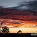 Winter morning in Queensland by kerenmcsweeney