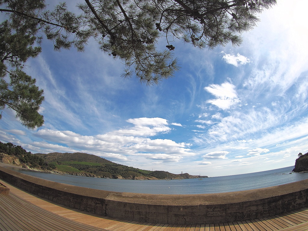 The cove at Paulilles by laroque