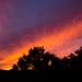 Sunrise by salza