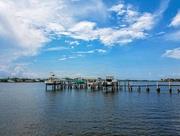 16th Jun 2016 - Florida living