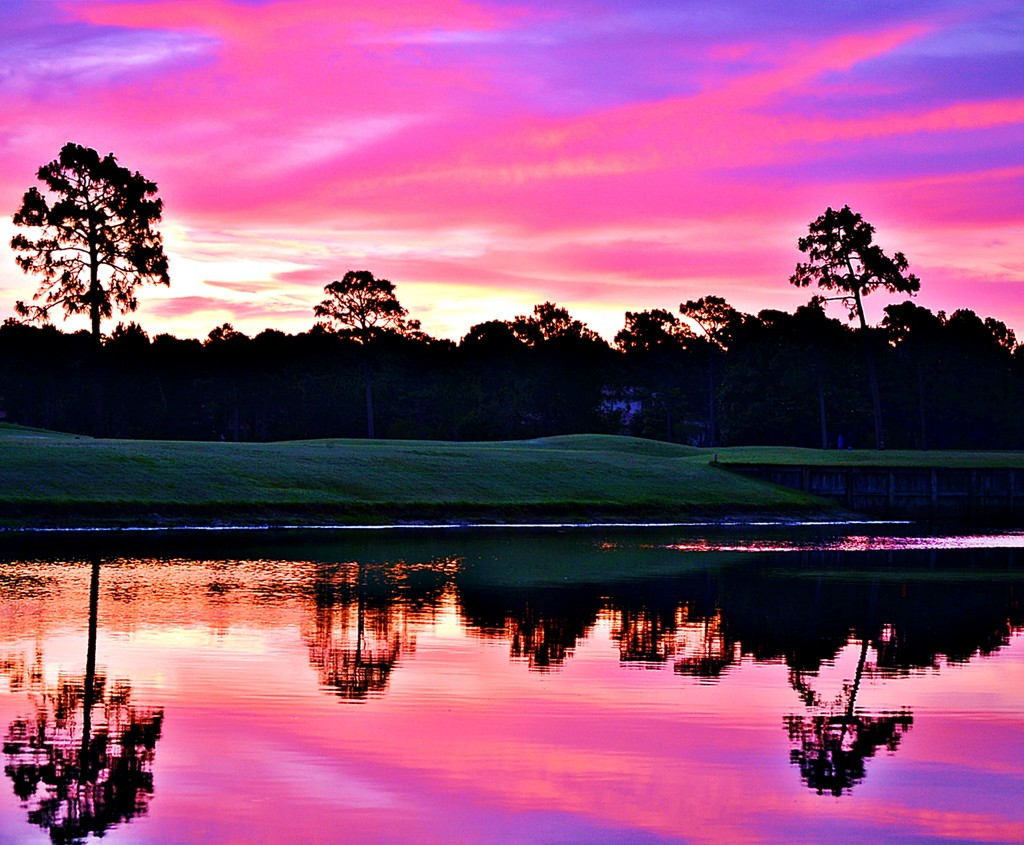 Reflecting on a Pink Florida Sunrise  by soboy5