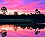 17th Jun 2016 - Reflecting on a Pink Florida Sunrise