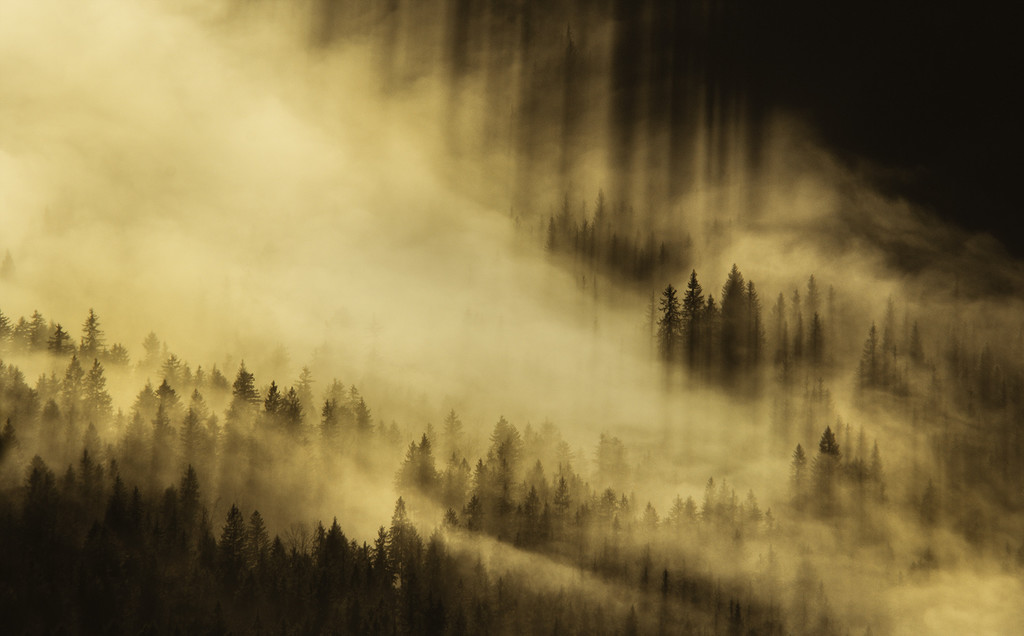 morning light floods the misty mountainside by jerome