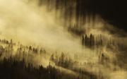 19th Jun 2016 - morning light floods the misty mountainside
