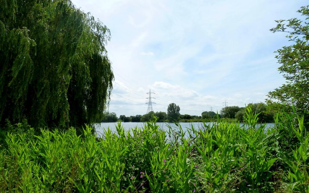 Walthamstow Wetlands by boxplayer