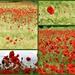 Poppy Heaven. by wendyfrost