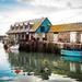 The fish shed by swillinbillyflynn