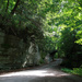 Narrow road at McConnells Mill State Park