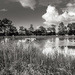Project 52: Week 26 - The Pond at Le Plessis... by vignouse