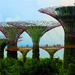 Gardens by the Bay by jaybutterfield