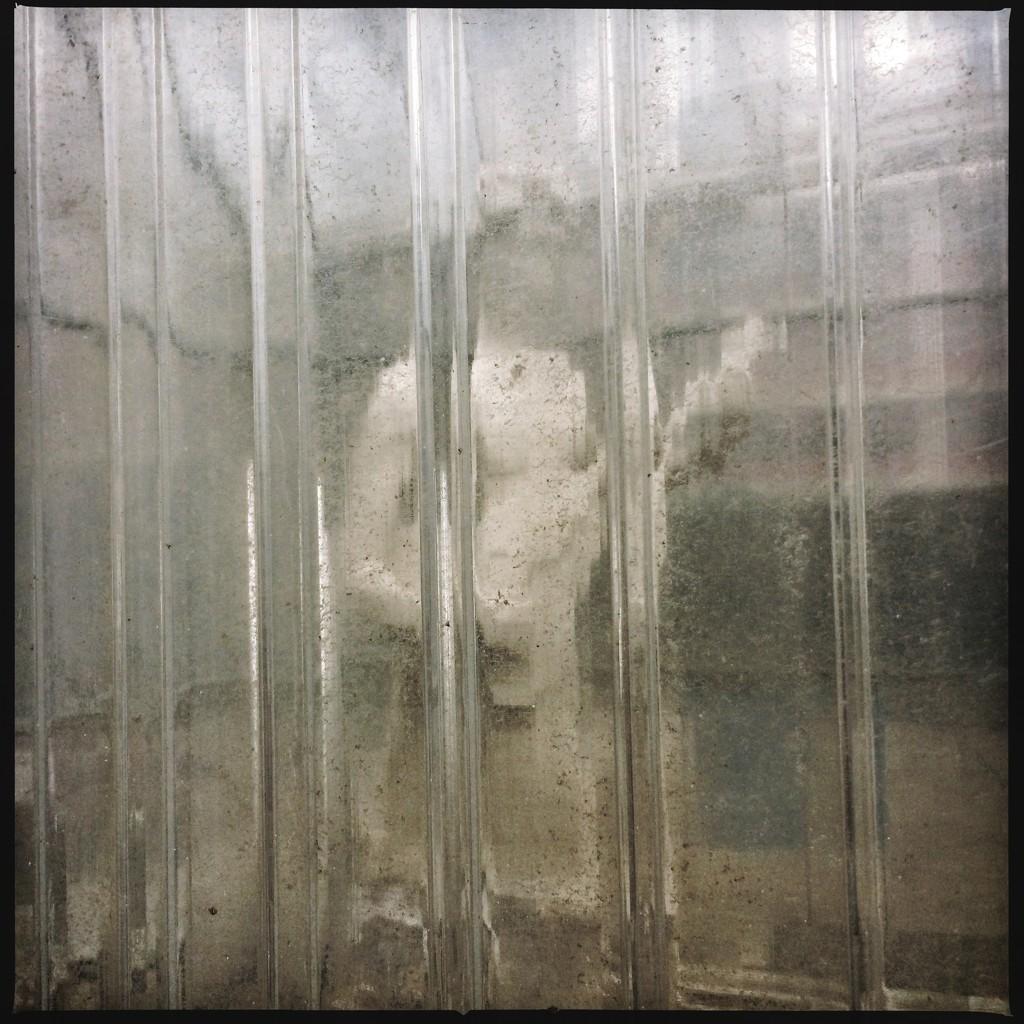 Orpheus in quarantine by mastermek