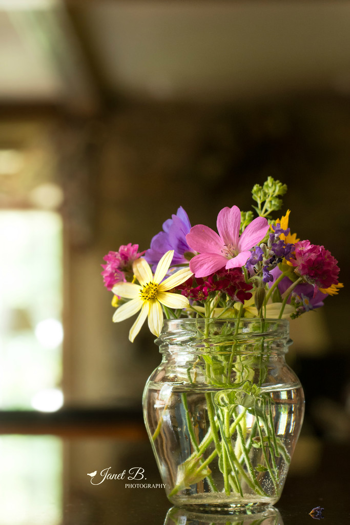 A Wee Bouquet From The Garden by janetb