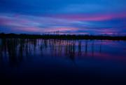 2nd Jul 2016 - Night Falls on the Everglades
