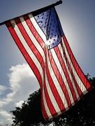 4th Jul 2016 - Happy Birthday America!