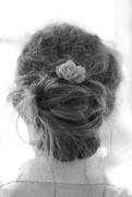 2nd Jul 2016 - Hair