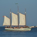 The Schooner Pride touring Charleston Harbor by congaree