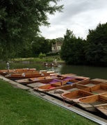13th Jul 2016 - Punts