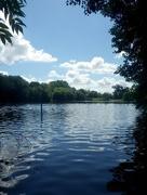 14th Jul 2016 - Great Park Lake