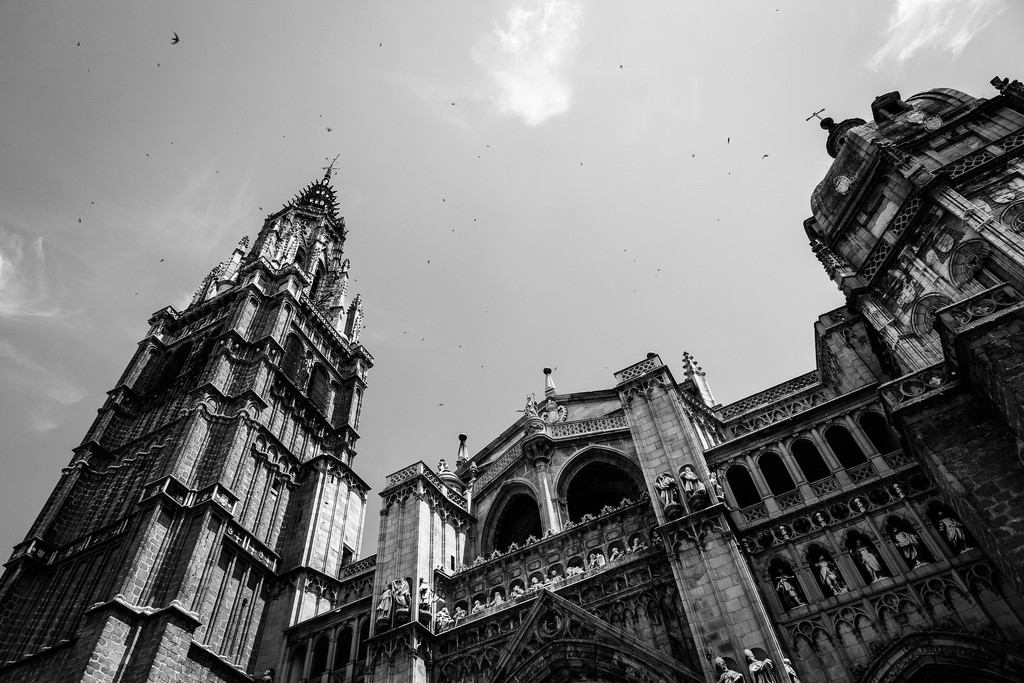 Cathedral of Toledo by pflaume